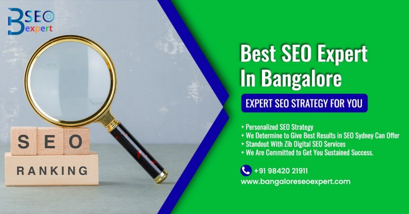 seo-expert-in-bangalore-seo-freelancer-bangaloreseoexpert-big-0